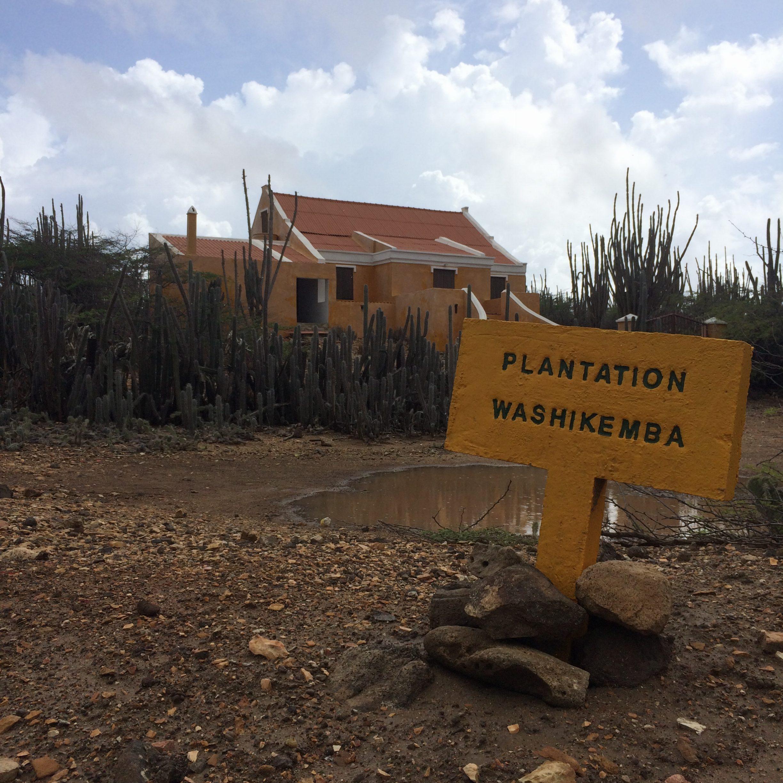 de Driving Trails Bonaire