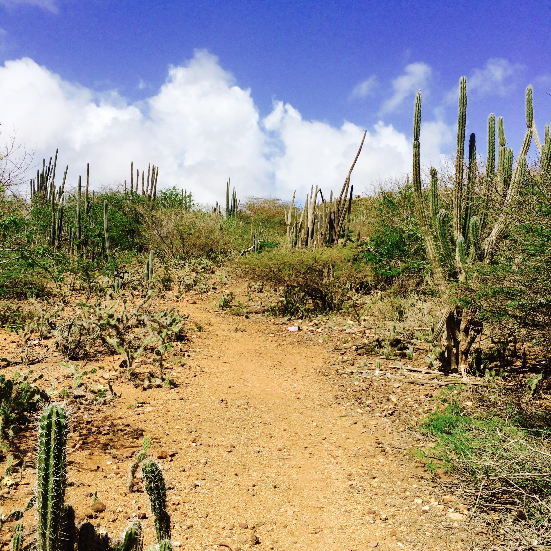 de zes hikingtrails