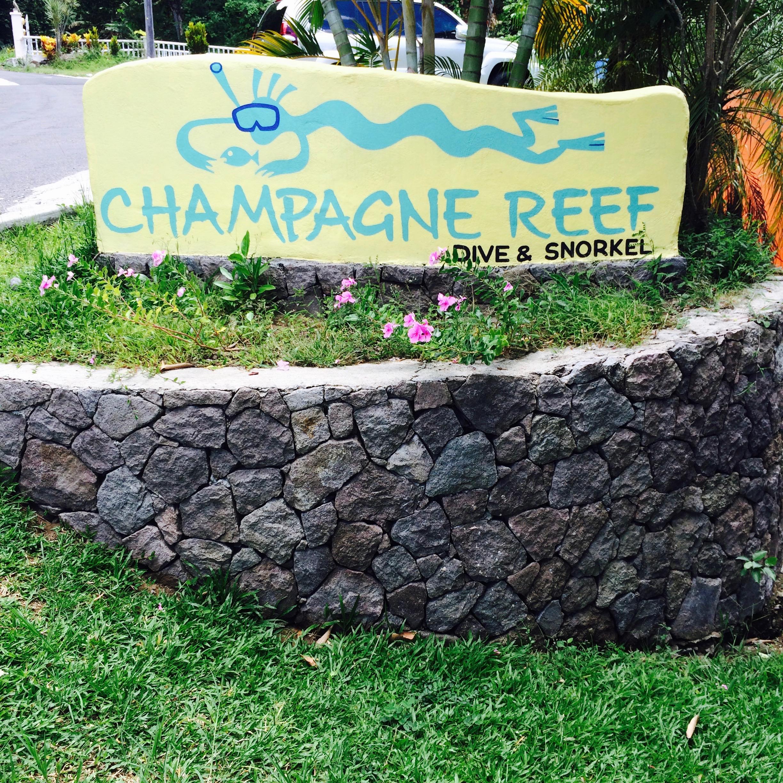 snorkelen bij champagne reef