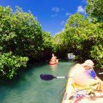 Kajakken en snorkelen in Mangrove Bonaire
