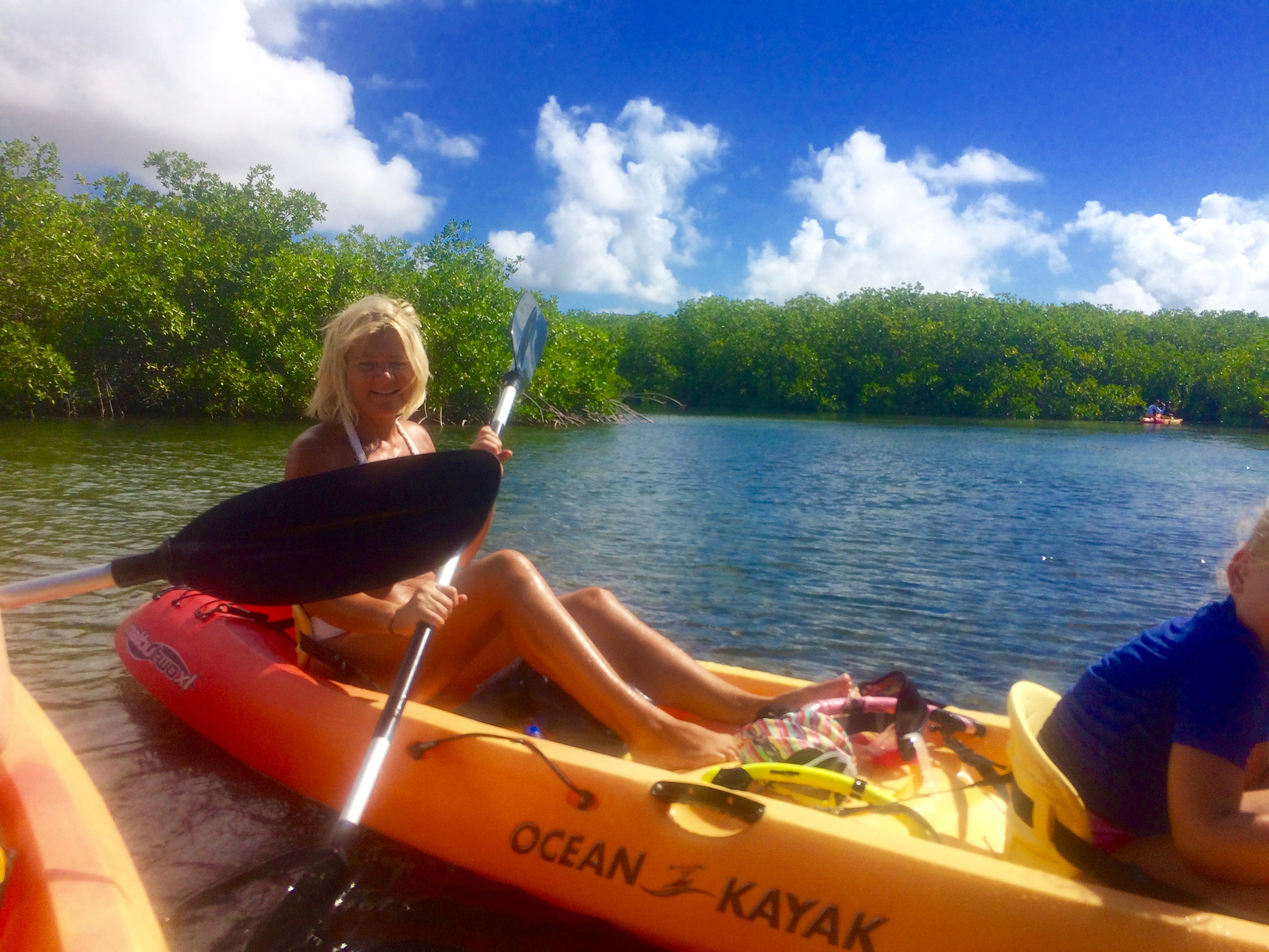 Kajakken en snorkelen door de mangroves van Bonaire