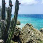Mijn top 5 instagram foto's en favorieten #1