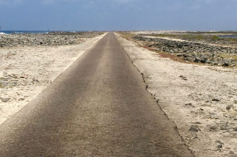 Roadtrip Zuid Bonaire in een fotocollage