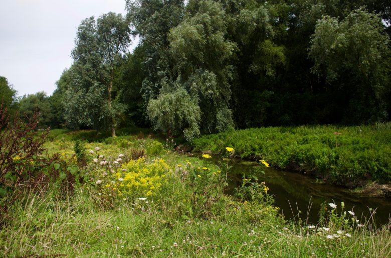wandelen en onthaasten in het smalste deel van Nederland