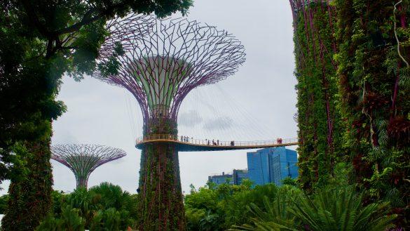 Leuke tips om te doen in Singapore