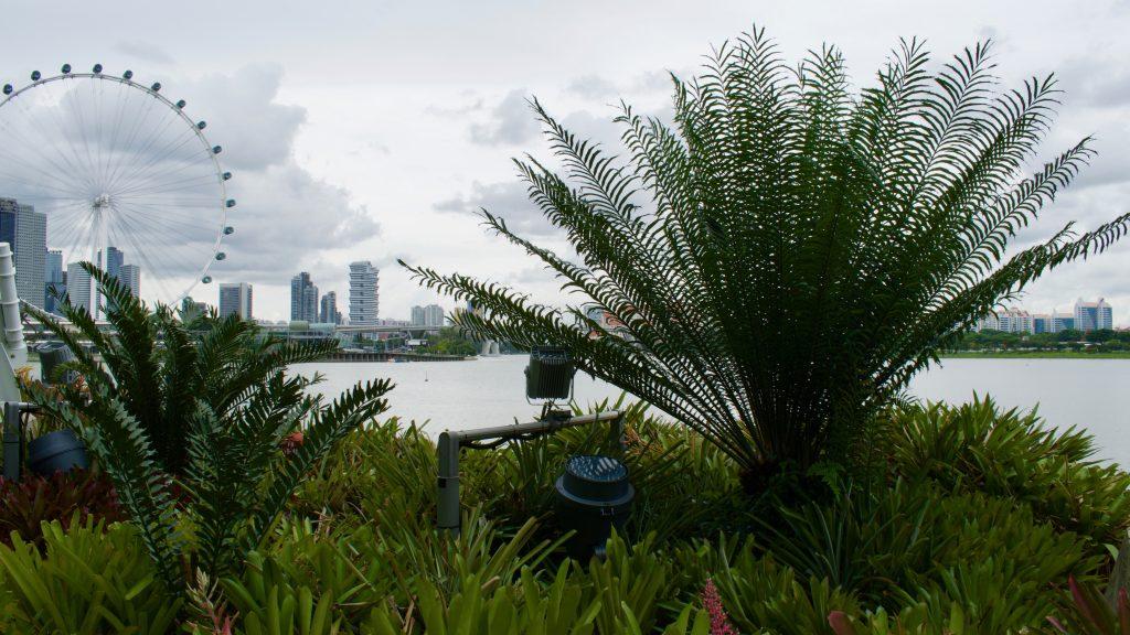 leuke dingen om te doen in Singapore