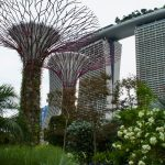 Leuke tips om te doen in Singapore