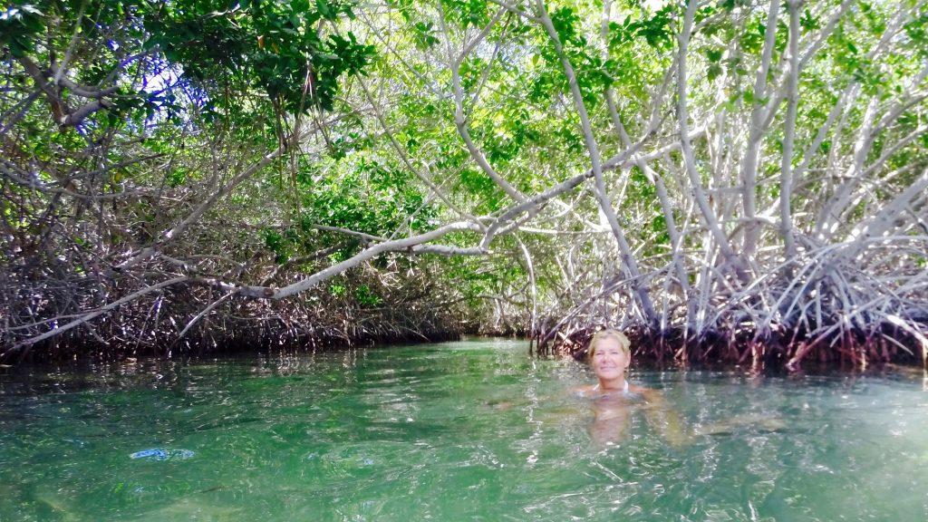 De mooiste snorkel plekken Bonaire