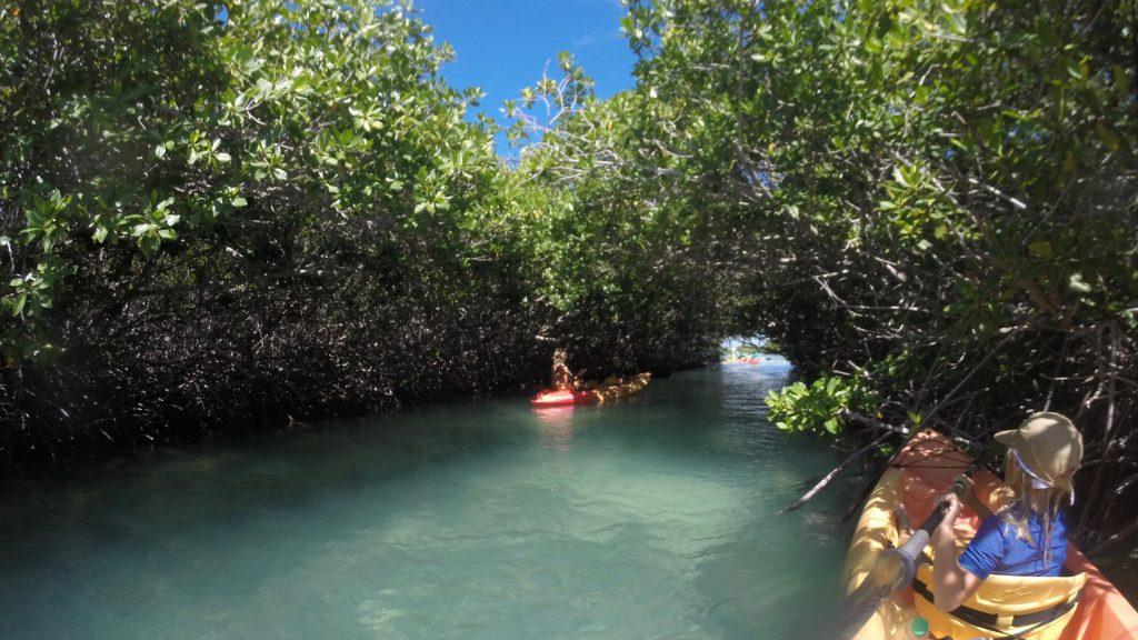 Leukste snorkel plekken Bonaire