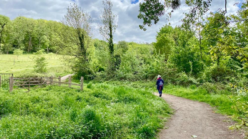 wandeling langs de Geleenbeek en door Stammenderbos